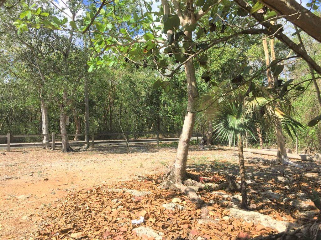 Solar en venta en Guayacanes Republica Dominicana